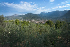 Soller green mountain landscape Royalty Free Stock Photography