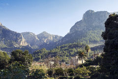 Soller. Mallorca Royalty Free Stock Image