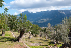 Soller walking path Royalty Free Stock Photography