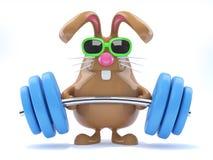sollevatore pesi del coniglietto 3d Immagine Stock Libera da Diritti