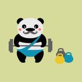 Sollevatore pesi del panda Immagini Stock