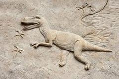 Sollievo del rex di T Fotografia Stock Libera da Diritti