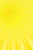 Solljus Arkivbilder