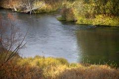 solljus för montana reflexionsflod Fotografering för Bildbyråer
