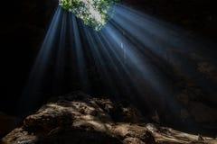 Solljus i grottan royaltyfria bilder