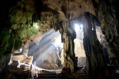 Solljus i grottan, Thailand royaltyfri foto
