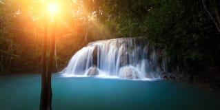 Solljus i skog med vattenfallet Royaltyfri Bild