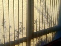 Solljus och skuggor Arkivbild