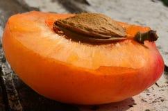 Solljus på aprikons Arkivfoto