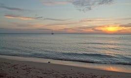 Solljus på stranden Royaltyfri Fotografi