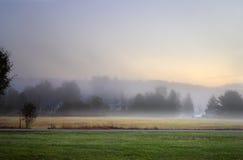 Solljus som gör strimmig till och med dimmiga träd på en höstmorgon arkivfoton