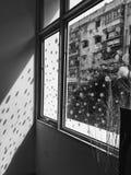 Solljus till och med fönstret Royaltyfri Bild