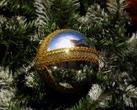 Solljuset reflekterat från den glass bollen Royaltyfria Foton