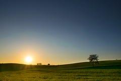 Solnedgång över ängen 1a Fotografering för Bildbyråer