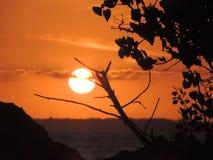 Solnedgång över royaltyfria foton