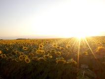 Solnedgång över Arkivbilder
