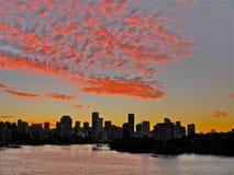 Solnedgång över den Brisbane floden och Brisbane Queensland Australien Arkivfoton