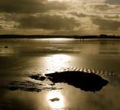 Solnedgång över den Garryvoe stranden Arkivfoton