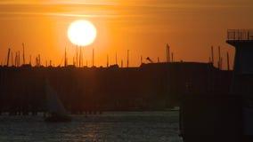 Solnedgång över en hamn stock video