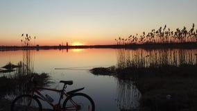 Solnedgång över en pittoresk sjö lager videofilmer