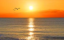Solnedgång över ett hav Arkivbild