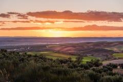 Solnedgång över fälten arkivfoto