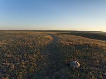 Solnedgång över grässlättnationalpark arkivfoto