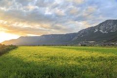 Solnedgång över gula ängar som är fjällnära i Gokova Arkivfoto