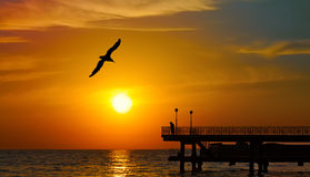 Solnedgång över havet Arkivbild