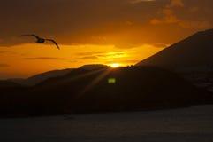 Solnedgång över havet bak berget Arkivfoto