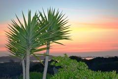 Solnedgång över Jacobs Bay Royaltyfri Bild