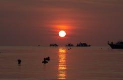 Solnedgång över Koh Tao Arkivbild