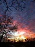 Solnedgång över NYC Arkivfoto