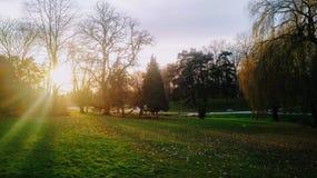 Solnedgång över Parc Barbieux i Roubaix, Frankrike på en frisk vinterafton royaltyfri bild