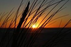 solnedgång över perth Royaltyfri Bild