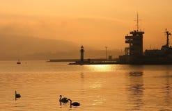 Solnedgång över port av Varna. Royaltyfri Fotografi