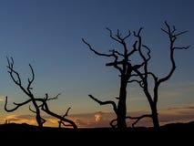 Solnedgång över prescotten, Arizona arkivbilder