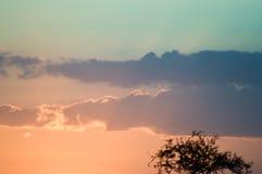 Solnedgång över savannet Royaltyfri Fotografi