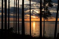 Solnedgång över sjön i ljusa färger för en pinjeskog av aftonhimlen Royaltyfria Bilder