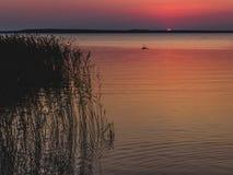 Solnedgång över sjön med vasser och gräs i förgrund royaltyfria foton
