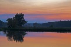 Solnedgång över sjön och ett träd Arkivfoton