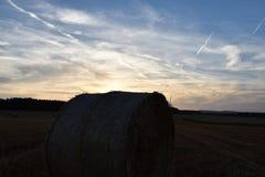 Solnedgång över skördat fält med runda baler av sugrör Arkivbild