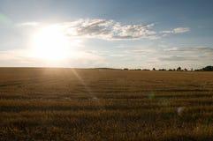 Solnedgång över skördfältet Arkivfoto