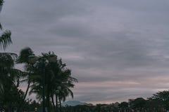 Solnedgång över staden och floden Hoian stad Royaltyfri Fotografi