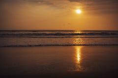 Solnedgång över stranden och det tropiska havet Indien Royaltyfri Bild