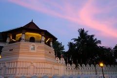 Solnedgång över templet av den sakrala tandreliken i Kandy, Sri Lanka royaltyfri bild