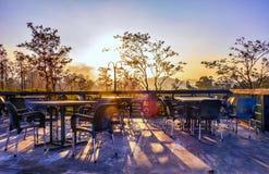 Solnedgång över träden arkivfoton