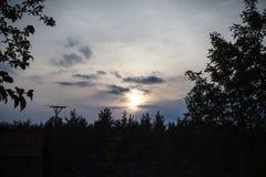 Solnedgång över trät royaltyfria bilder