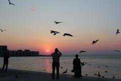 Solnedgång över Trieste, Italien Arkivfoton