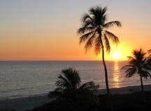 Solnedgång över tropisk strand Arkivfoton